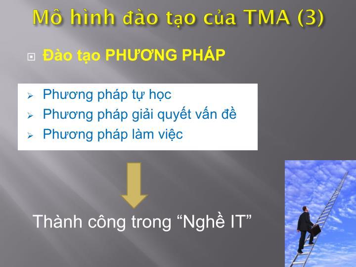 Mô hình đào tạo của TMA (3)