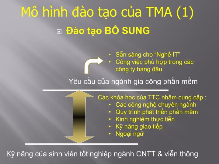 Mô hình đào tạo của TMA (1)