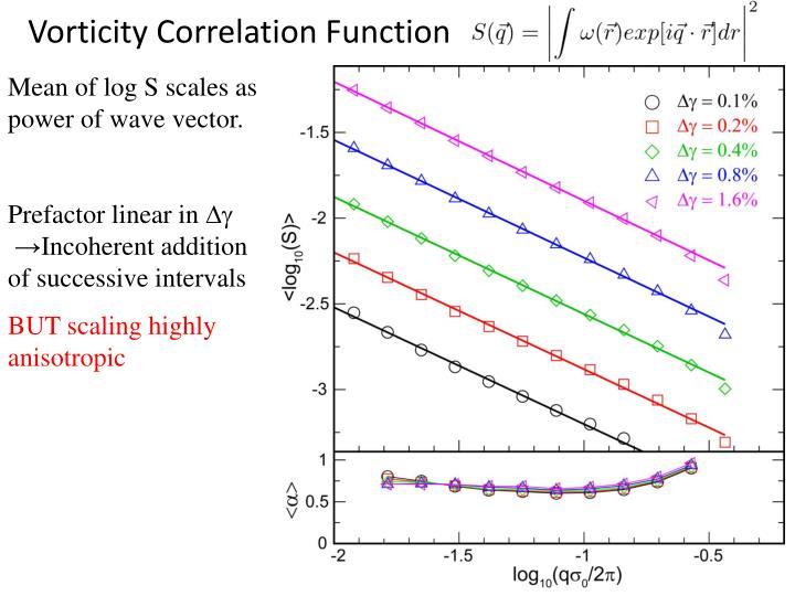 Vorticity Correlation Function