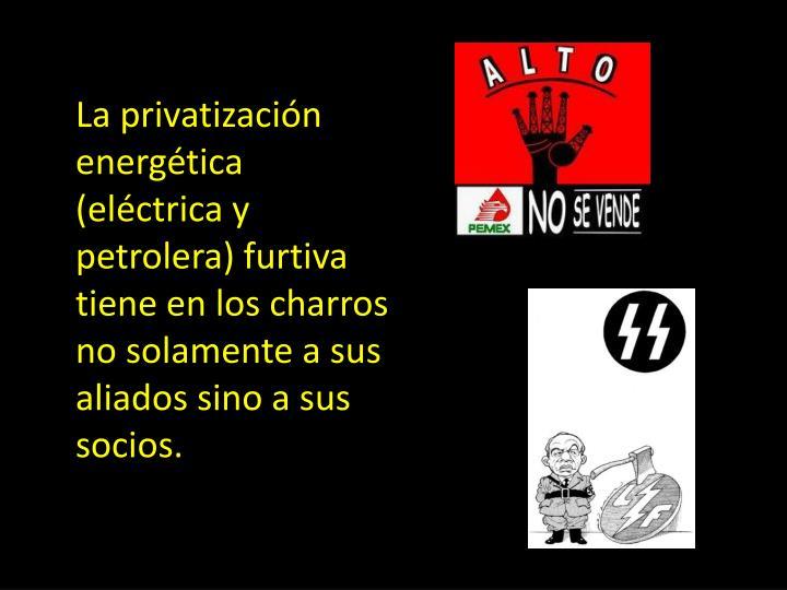 La privatización energética (eléctrica y