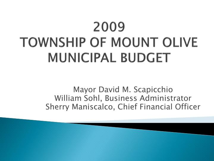 2009 township of mount olive municipal budget