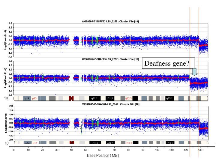 Deafness gene?