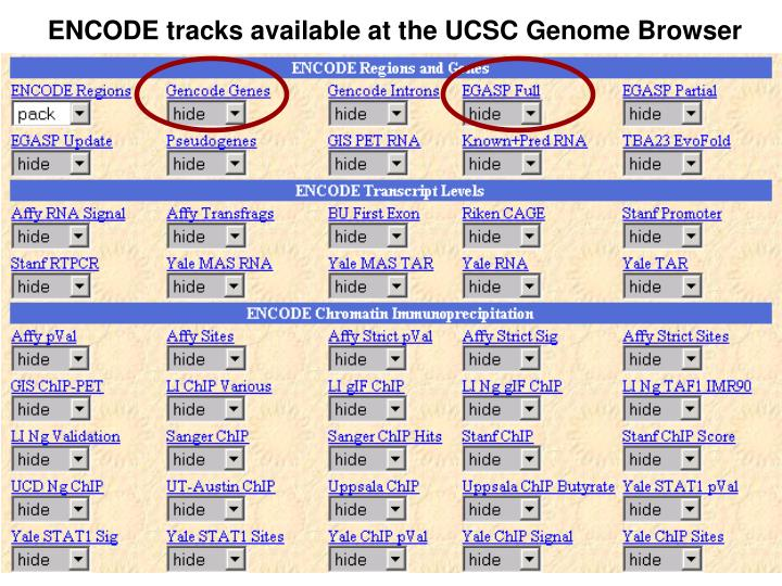 ENCODE tracks available at the UCSC Genome Browser