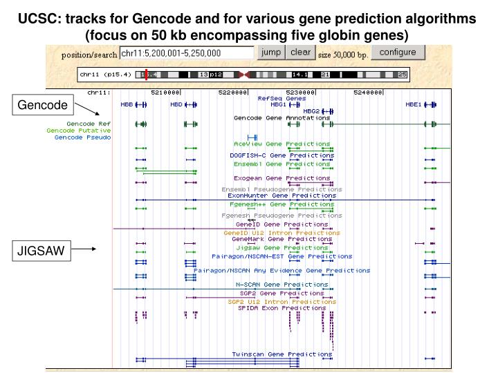UCSC: tracks for Gencode and for various gene prediction algorithms
