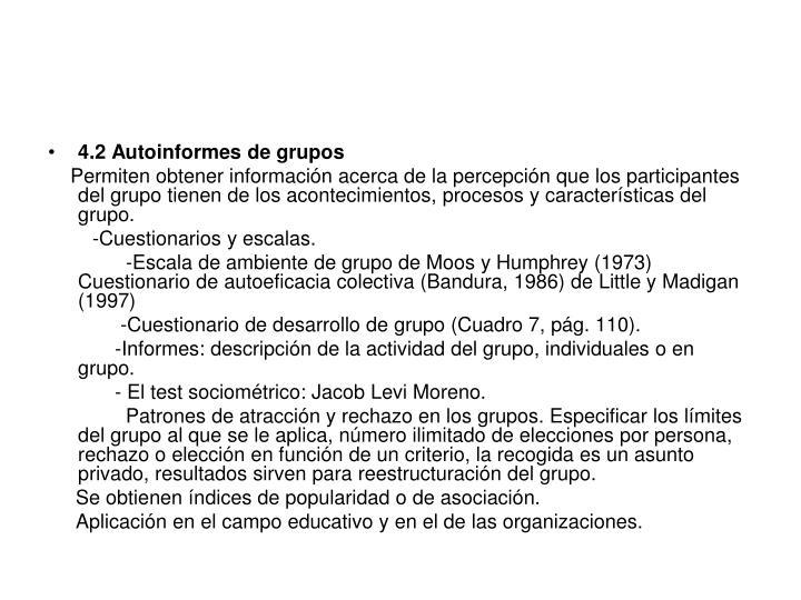 4.2 Autoinformes de grupos