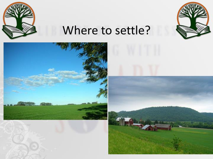 Where to settle?