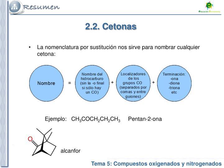 2.2. Cetonas