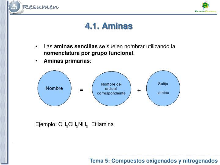 4.1. Aminas
