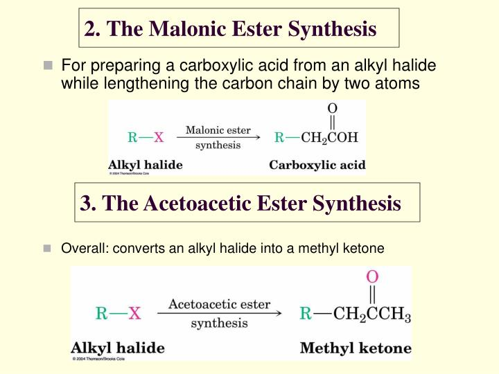 2. The Malonic Ester Synthesis