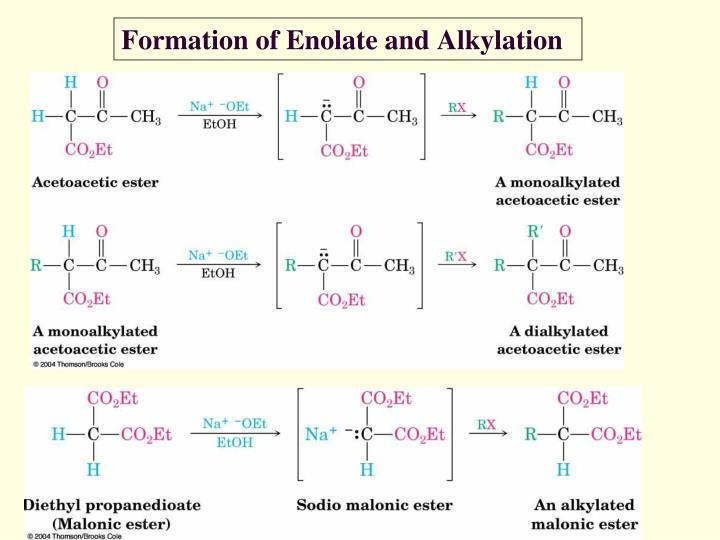 Formation of Enolate and Alkylation