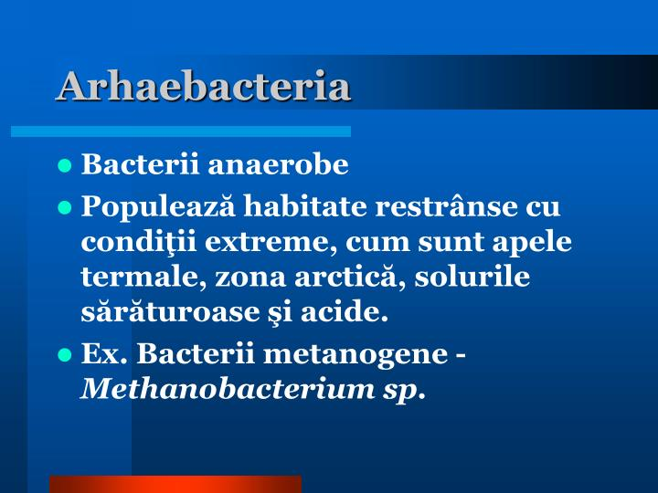 Arhaebacteria