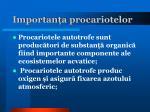 importan a procariotelor