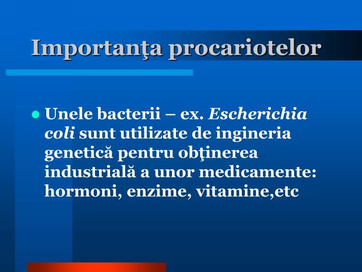 Importanţa procariotelor