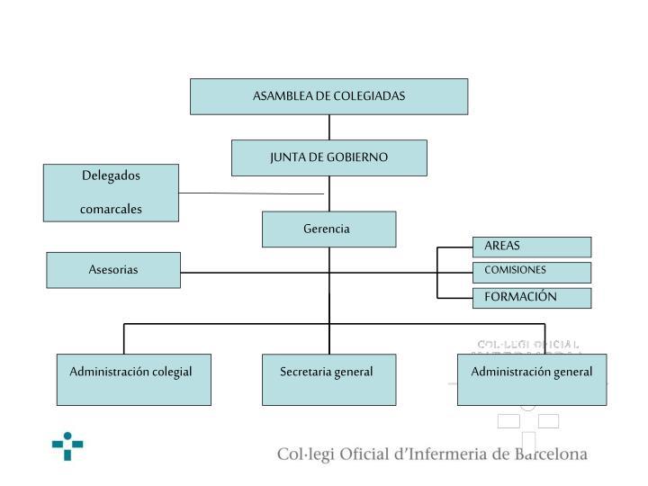 ASAMBLEA DE COLEGIADAS