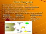 other enzymes