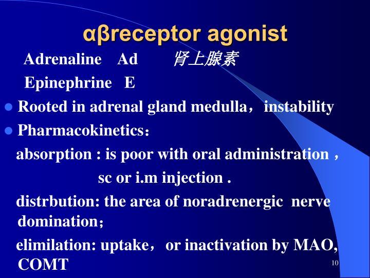 αβreceptor agonist