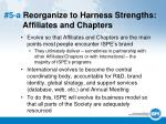 5 a reorganize to harness strengths affiliates and chapters