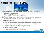 what is the role of cops