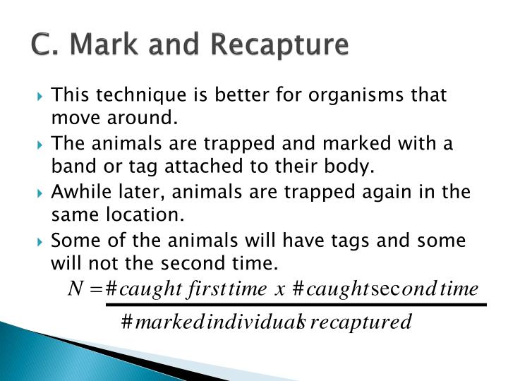 C. Mark and Recapture