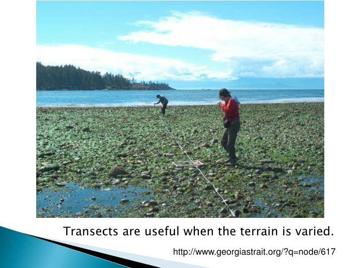 Transects are useful when the terrain is varied.