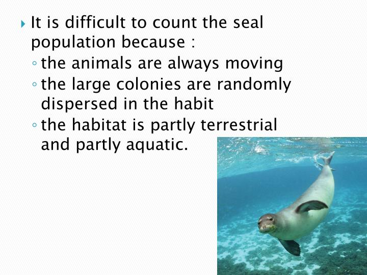 It is difficult to count the seal population because :