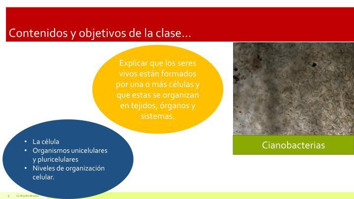 Contenidos y objetivos de la clase…