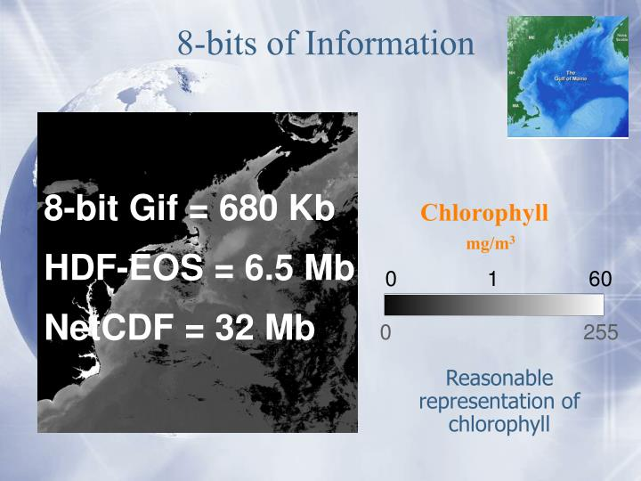 8-bits of Information