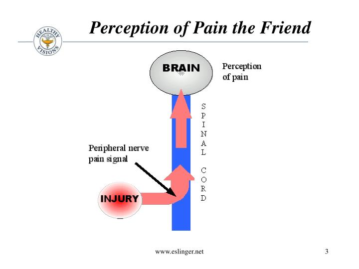 Perception of Pain the Friend