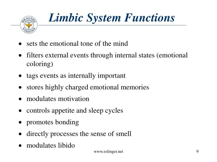 Limbic System Functions