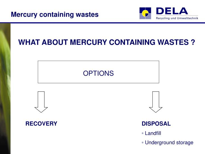 Mercury containing wastes