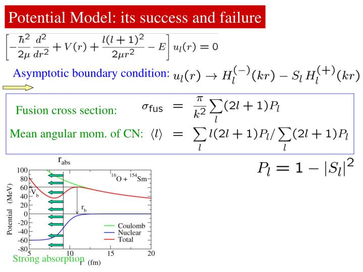 Potential Model: its success and failure