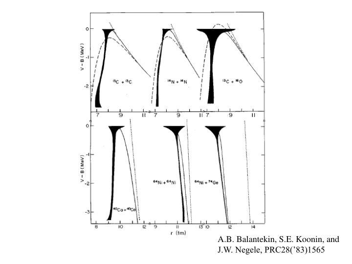 A.B. Balantekin, S.E. Koonin, and