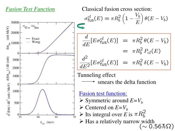 Fusion Test Function