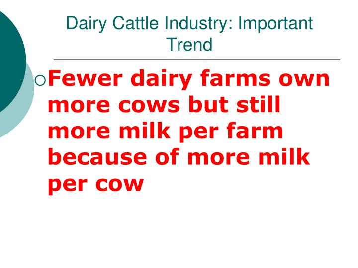 Dairy Cattle Industry: Important Trend