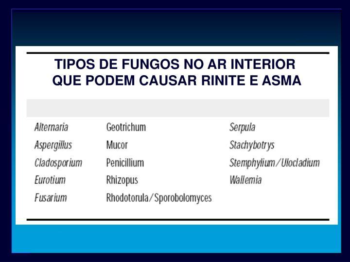 TIPOS DE FUNGOS NO AR INTERIOR