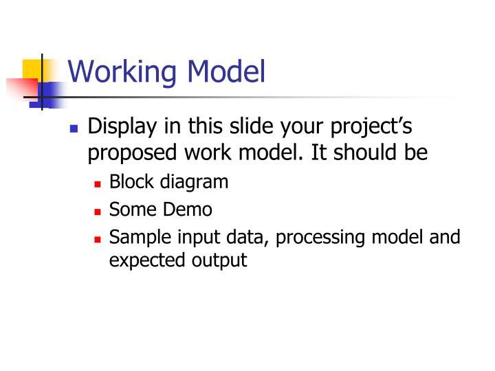 Working Model