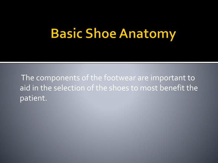 Basic shoe anatomy