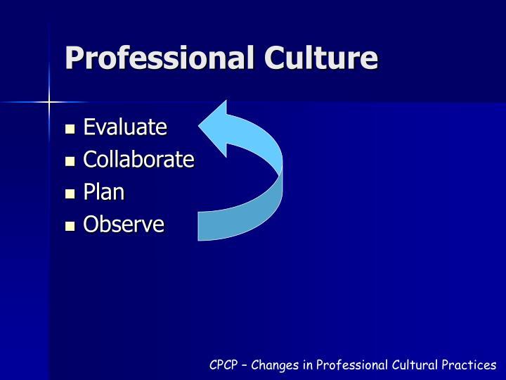 Professional Culture