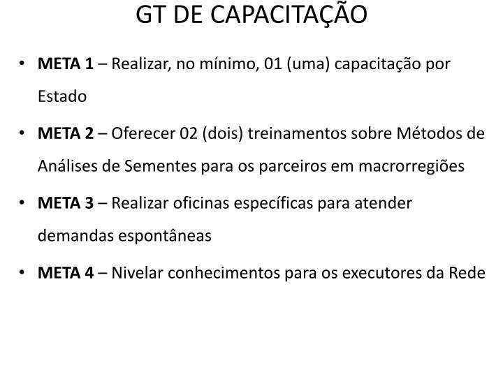 GT DE CAPACITAÇÃO