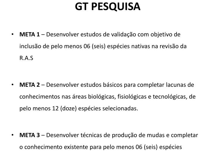 GT PESQUISA