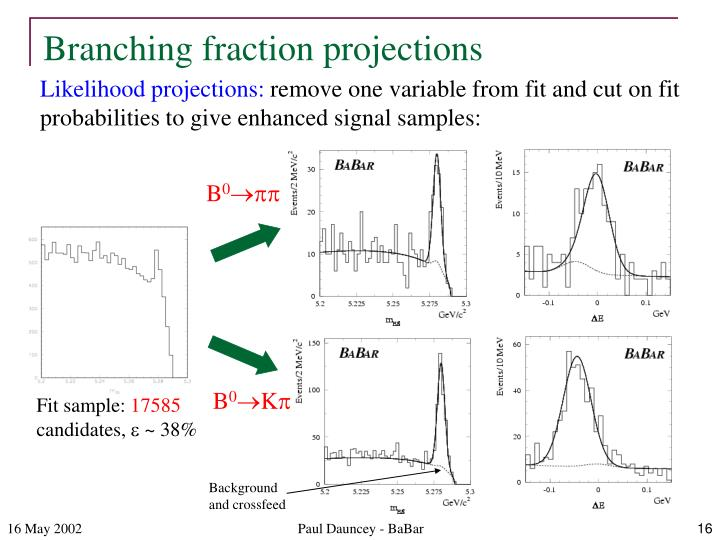 Branching fraction projections