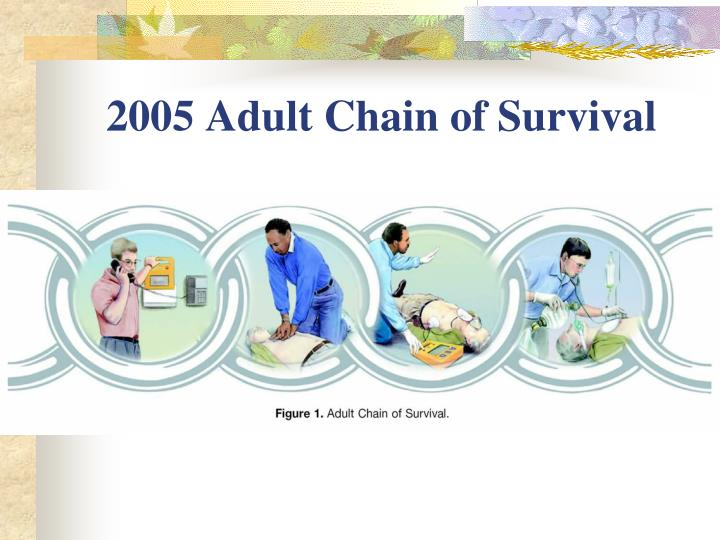2005 Adult Chain of Survival