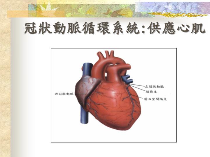 冠狀動脈循環系統