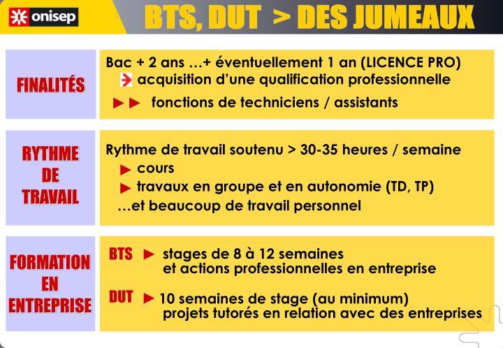 BTS, DUT  > DES JUMEAUX