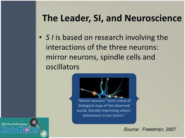 The Leader, SI, and Neuroscience