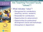 are teaching focused faculty valued