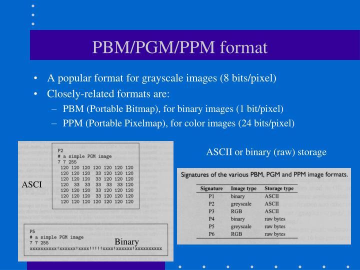PBM/PGM/PPM format