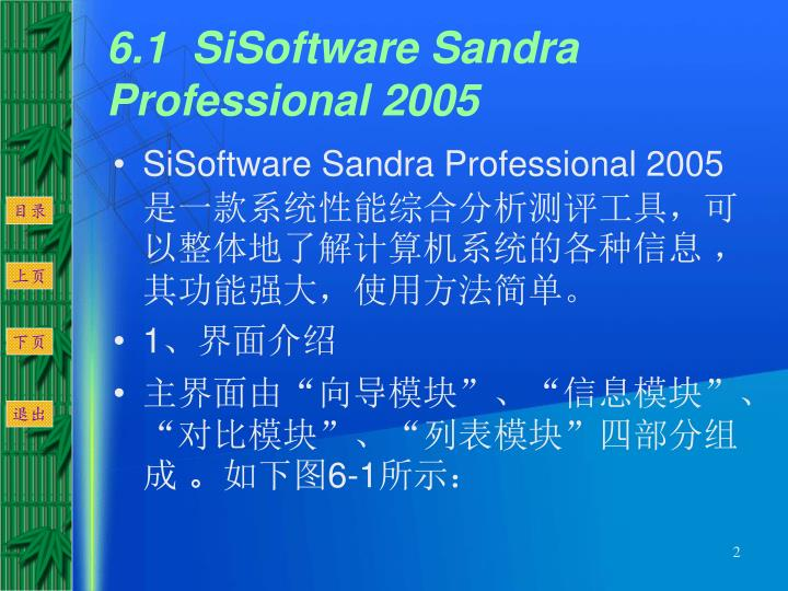 6.1  SiSoftware Sandra Professional 2005