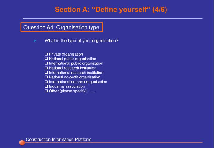 "Section A: ""Define yourself"" (4/6)"
