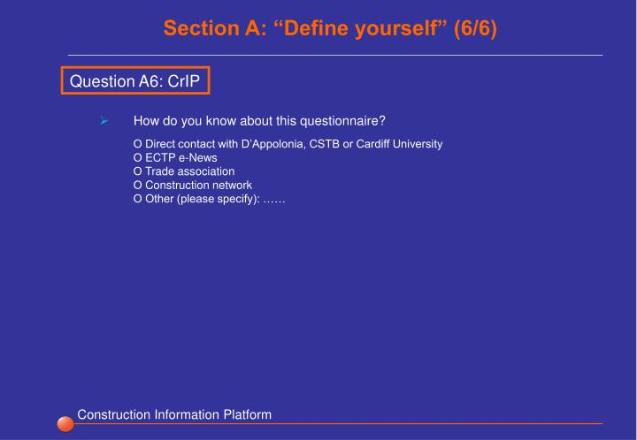 "Section A: ""Define yourself"" (6/6)"